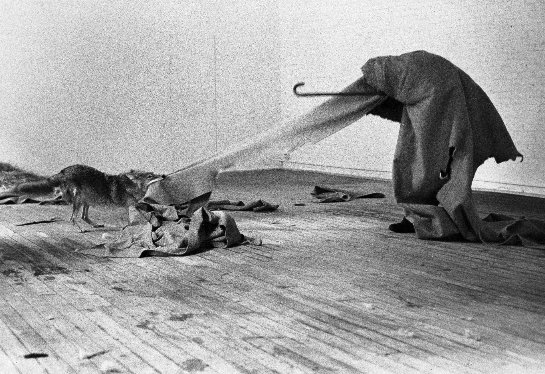 Joseph-Beuys-I-like-America-and-America-likes-me-1974-René-Block-Gallery-New-York